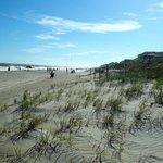 View from their beach access
