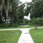 Grounds-grove with Spanish moss and fountain