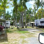 Foto de Noosa Caravan Park