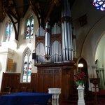 The huge organ