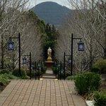 A path home to Buddha