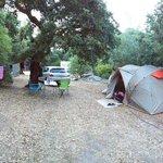 Foto de Camping Les Chênes