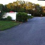 Foto de Viking Shores Motor Lodge