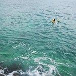 Swimming in Aqua Princess Hotel's easy access water spot