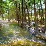 Cold Frio River
