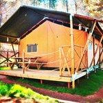 Lodge Tent - Safari Tent