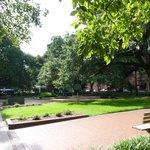 Reynolds Square