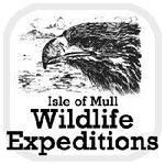 Isle Of Mull Wildlife Expeditions