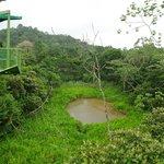 Gamboa Rainforest Resort - Teleferico
