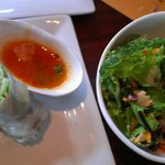 mixed salad, spring roll