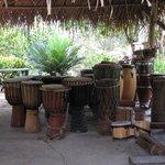 beautiful drums at Maroon Creole Drum School