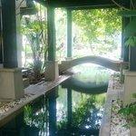 The pool running between two Villas