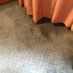 21st Floor room carpeting