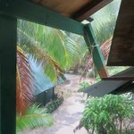 Up high in the treehouse hut- great view of the lagoon (not shown here)