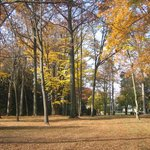 Spiegel Grove....lots of great places to walk!