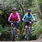 Mountain bike trails nearby