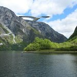 Nice Scenery of Norway