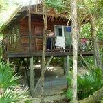 Palemtto beach cabana