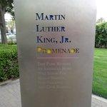 a walk at the MLK boardwalk