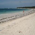 Playa Paradisus Palma Real