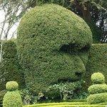 Green man hedge