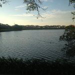 The lake outside