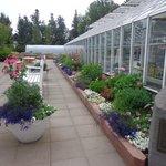 Invernadero del Jardín Botánico