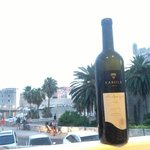 I wish Istrian wine was available outside of Croatia