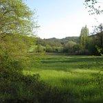 Farmland adjoining Bogovivo Agriturismo