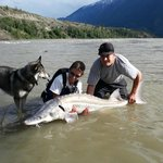 Sturgeon fishing at its best.  Give us a call