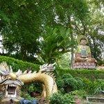 buddha & big dragon