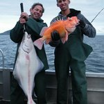 Yelloweye Rockfish and Halibut