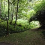 Walkway to Bridal Veil Falls