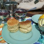 Homemade jam, clotted cream and fresh scones