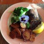 Blackened Cajun whitefish at the Grandview Inn Dining Room, Tobermory, Ontario