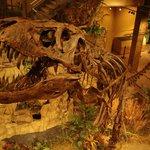 Dinosauriermuseum in Glendive