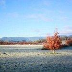 winter in old wesleydale