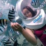 Seawalker Tour, Sanur, Bali
