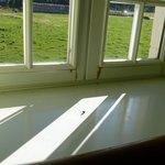 Bord de fenêtre et mouche