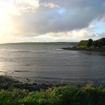 View of Shannon Estuary from Glin park.
