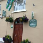 Welcome to O'Driscoll's B&B - Up Limerick !