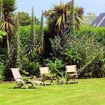 Gartenanlage mit exotischen Pflanzen