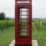 working phone booth in middle of vineyard
