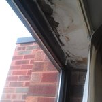 Mold and water damage around the window