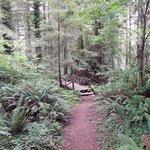 nice walking trails