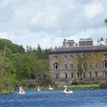 Westport house with Swan boats