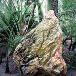 Ciekawe kamienie