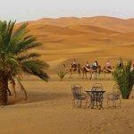 ballade dans le désert