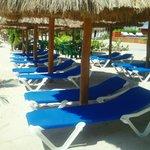 CLUB DE PLAYA SR FROGS BEACH CLUB BY COSTA MAYA