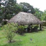 Hangout Hut